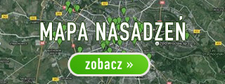 mapa-320px