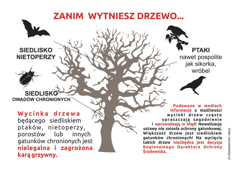 ulotka-drzewa-strona-2a